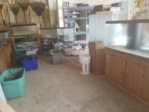 COLLECTION OF AQUARIUMS (FISH TANKS) AND SUPPLIES! in Naperville, Illinois