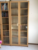 Bookcase with glass doors in Bolingbrook, Illinois