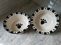 Pair of stoneware dog bowls in Bolingbrook, Illinois