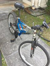 Bicycle in Okinawa, Japan