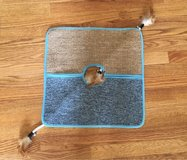 Cat Play/Scratch Mat in Shorewood, Illinois