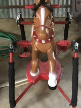 Radio Flyer horse in Livingston, Texas