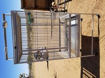 Bird Cage in 29 Palms, California