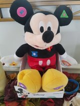 Disney learning pals in Westmont, Illinois