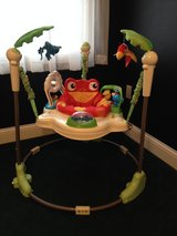 Fisher Price Rain Forest Jumperoo for Baby!!! in Fort Knox, Kentucky