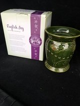 Scentsy English Ivy in Tinley Park, Illinois