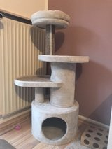 Cat tree (gently used) in Ramstein, Germany