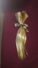 HAIR EXTENSIONS 6 in Oswego, Illinois
