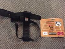 Dog Car Harness in Naperville, Illinois