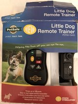 Dogs, training collar with remote in Wheaton, Illinois