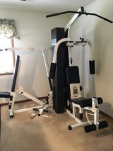 ParaBody Serious Steel Model 425 Home Gym in Naperville, Illinois