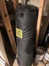 punching Bag in Westmont, Illinois