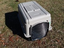 Pet carrier in Camp Lejeune, North Carolina