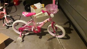Princess Bicycle for sale in Palatine, Illinois