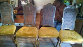 Cane back chairs 1940-1950's in Houston, Texas