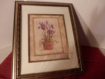 Iris Picture in Ornate Frame in Chicago, Illinois