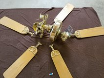 Ceiling Fan with 5 blades in Oswego, Illinois