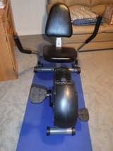 Recumbent Exercise Bike in Chicago, Illinois