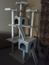 Cat tree in Glendale Heights, Illinois