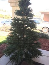 7.5 Christmas tree in Miramar, California
