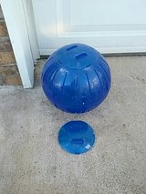 exercise ball in Pleasant View, Tennessee