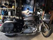 Only 505 Miles 2007 Harley Sportster 883 Custom in Quad Cities, Iowa