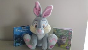 Thumper Plush Bunny and Board Books in St. Charles, Illinois