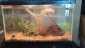 10 Gallon Fish Tank and all accessories, food, and cleaning supplies. in Fort Leonard Wood, Missouri