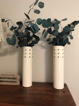 Two off-white vases with bronze buttons & Eucalyptus in Spring, Texas