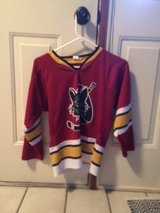 Wolves Hockey Jersey in St. Charles, Illinois