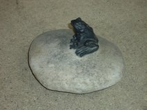 fake rock w/frog in Naperville, Illinois