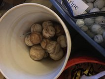 Baseballs and Equiptment in Sandwich, Illinois