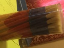30 paintbrushes for children in Chicago, Illinois