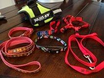 Medium Pet Harnesses and Leashes in Ramstein, Germany