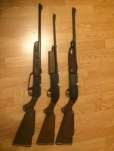 PELLET GUN / AIR RIFLE - three guns Crosman 760 - Daisy 880 - Crosman Powermaster 66 in Morris, Illinois