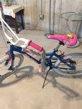 "Girls 20"" bike in Joliet, Illinois"