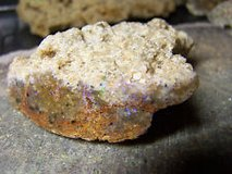 looking for for rough : UNCUT UNPOLISHED nice Louisiana Opal in Leesville, Louisiana