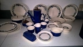 COLLECTIBLE WILD GRAPE DESIGN DINNERWARE in Keesler AFB, Mississippi