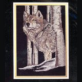 WOLF Counted Cross Stitch KIT, 9x13 Sealed Janlynn 30-225 in Westmont, Illinois