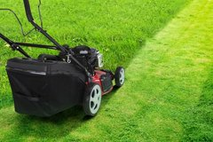 Lawn & Landscaping | PCS Cleaning | Junk Removal in Ramstein, Germany
