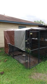 Outdoor Dog Kennel in Baytown, Texas