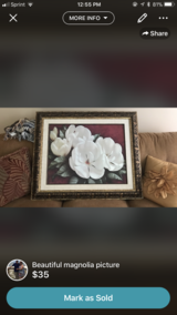 Beautiful magnolia framed picture in Keesler AFB, Mississippi