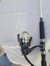 Tiger Fishing rod in Ramstein, Germany