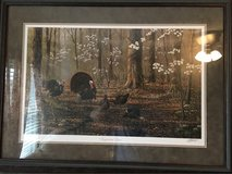 NWTF framed wild turkey pictures in Madisonville, Kentucky