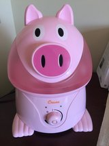 Pig Humidifier in Okinawa, Japan