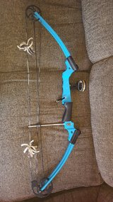 Mathews Genesis youth compound left hand bow in Naperville, Illinois