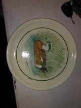 Duck plate in Fort Campbell, Kentucky