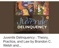 juvenile delinquency textbook in Oswego, Illinois