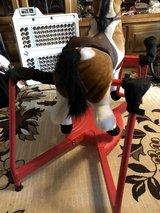 Jumper horse with sound in Ramstein, Germany