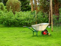Affordable Lawn & Landscaping Service| Junk removal in Ramstein, Germany
